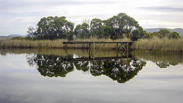 4 Swimming Dam